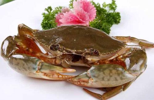 减肥可以吃青蟹吗怎么吃好吃