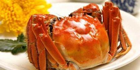 挑选青蟹看准这3个地方,个个蟹肉饱满蟹膏丰腴
