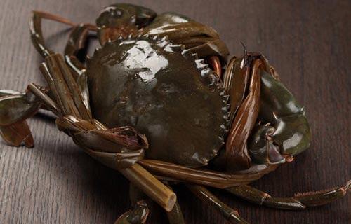三门青蟹吃法怎么吃好吃如何挑选青蟹比较好?