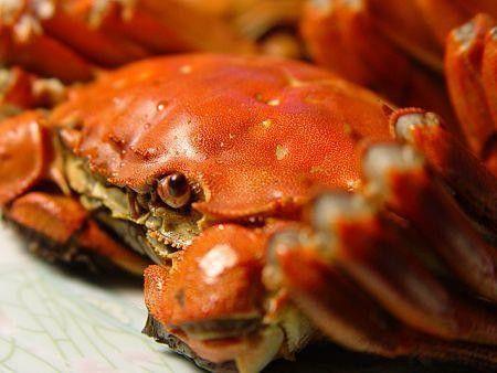减肥期间可以吃青蟹吗 青蟹的热量高吗