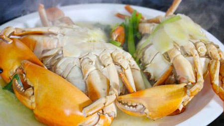青蟹可以和绿豆一起吃吗 绿豆不能和什么一起吃